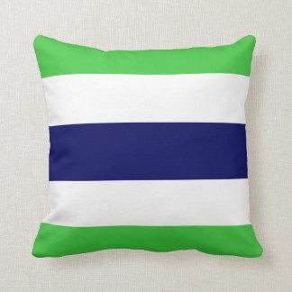 New Kids Navy Blue & Green Stripe Pillow Gift