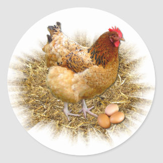NEW LAID EGGS ~ Envelope Sealers/Stickers Classic Round Sticker
