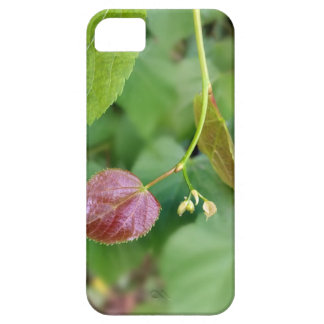new leaf spring barely there iPhone 5 case