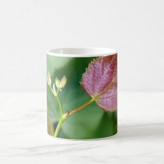 new leaf spring coffee mug