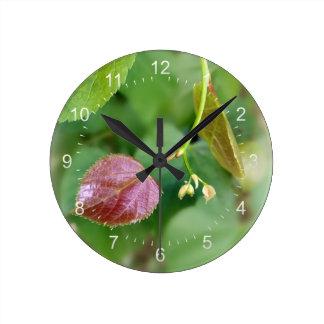 new leaf spring round clock