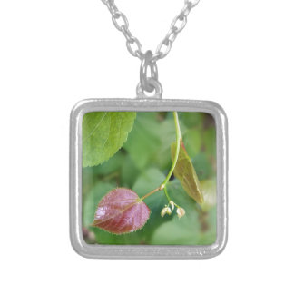 new leaf spring silver plated necklace