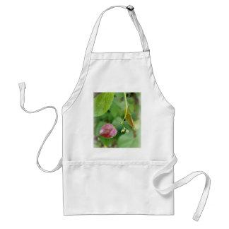 new leaf spring standard apron