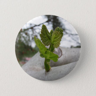 New life idea concept 6 cm round badge