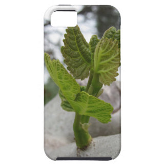 New life idea concept iPhone 5 covers