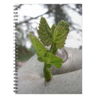 New life idea concept spiral notebook