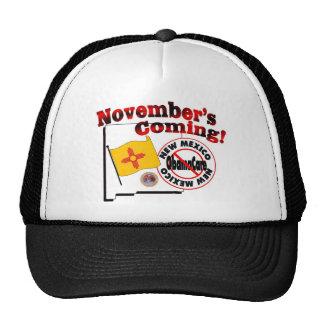 New Mexico Anti ObamaCare – November's Coming! Cap