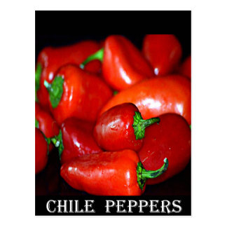 New Mexico Chili Peppers (Chile) Postcard