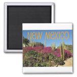New Mexico Fridge Magnets