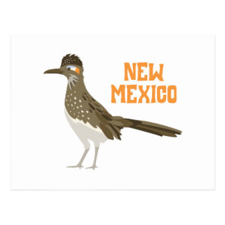 New Mexico Roadrunner Postcard