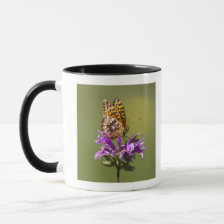 new mexico, united states of america mug