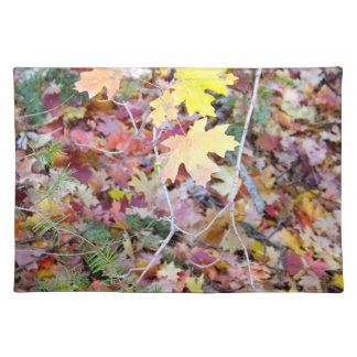 New Mexico Wild Maples Cloth Placemat