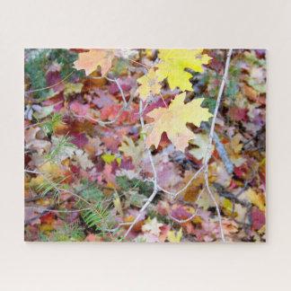 New Mexico Wild Maples Jigsaw Puzzle (520 Piece)