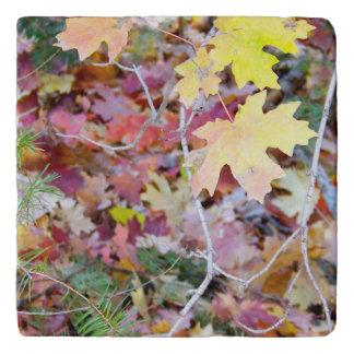New Mexico Wild Maples Marble Trivet