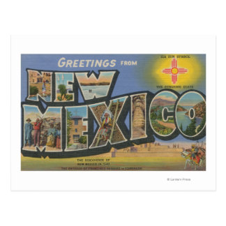 New MexicoLarge Letter ScenesNew Mexico Postcard