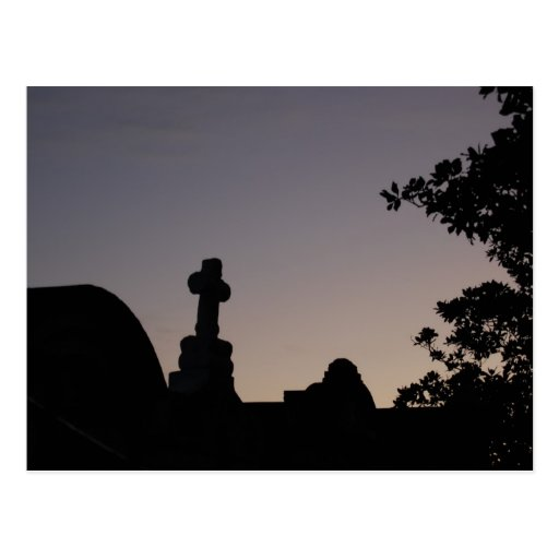 New Orleans Cemetery Post Card