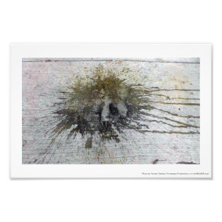 New Orleans French Quarter Photo Print Spill Bear