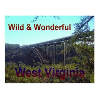 New River Bridge Postcard