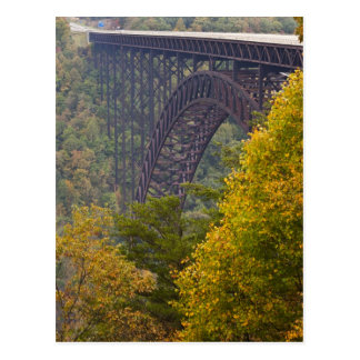 New River Gorge Bridge, New River Gorge Postcard