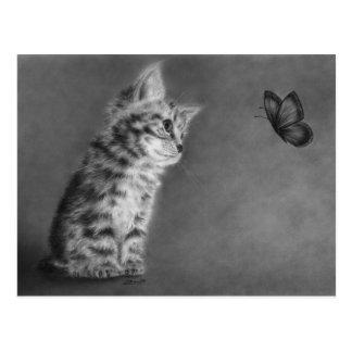 New Wonders Kitten Postcard
