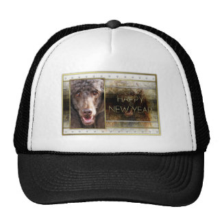 New Year - Golden Elegance - Poodle - Chocolate Mesh Hats
