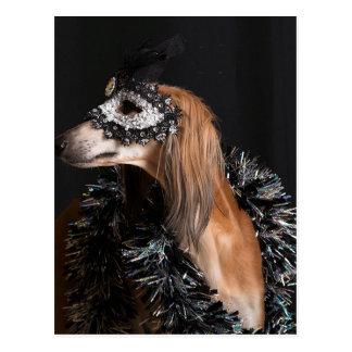New Years Masquerade 2014 012.jpg Postcard