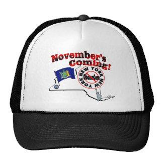 New York Anti ObamaCare – November's Coming! Cap