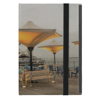 New York City From a Distance iPad Mini Cover