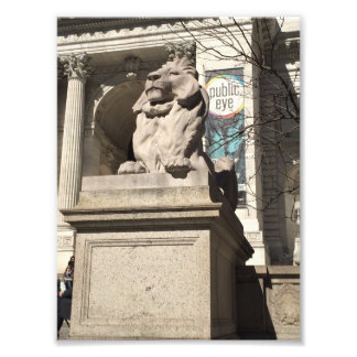New York City NYC Public Library Lion Statue Photo Print