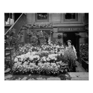 New York Flower Shop, 1895. Vintage Photo Poster