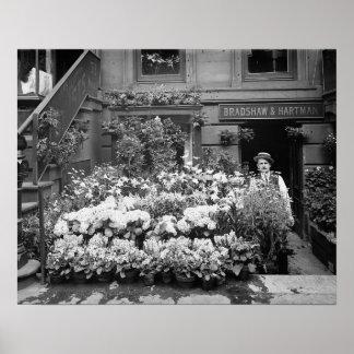 New York Flower Shop, 1895. Vintage Photo Poster