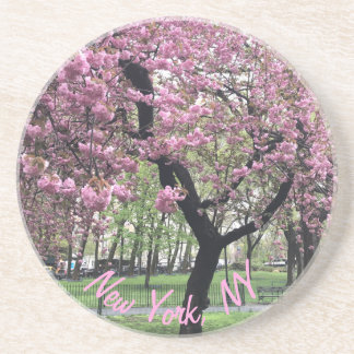 New York, NY Pink Cherry Blossom Tree Manhattan Coaster