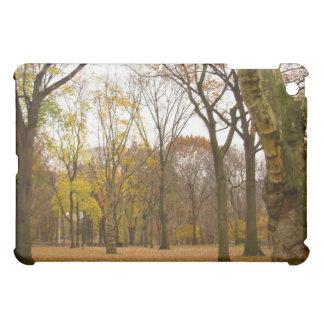 New York Spec Central Park  iPad Mini Cases
