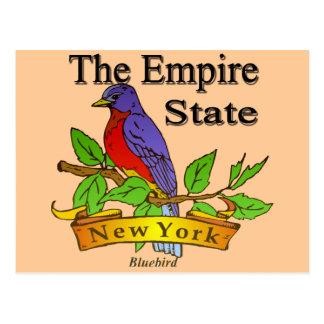 New York The Empire State Bird Postcard