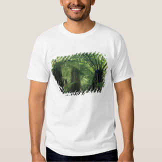 New Zealand, Haast Valley, Westland, Soft Tree T-shirt
