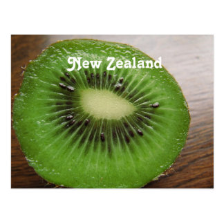 New Zealand Kiwi Postcard