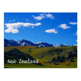 new zealand landscape postcard
