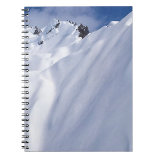 New Zealand Mountains, Aerial View.JPG Note Book