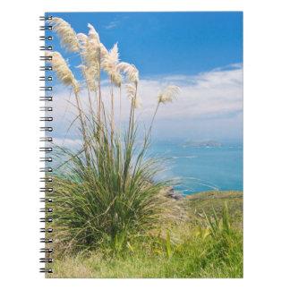 New Zealand, North Island, Cape Reinga Note Book