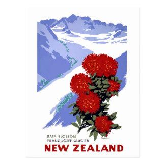 New Zealand Rata Blossom Vintage Travel Poster Postcard