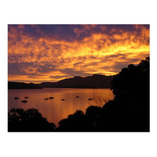 New Zealand Sunset Postcard