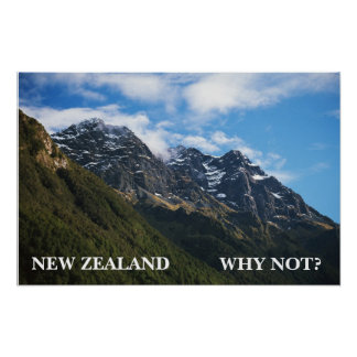 NEW ZEALAND WHY NOT POSTER