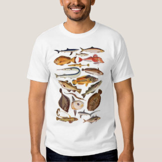 newartsweb - So Many More Fish, So Little Time Tee Shirt