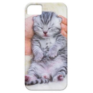Newborn cat lying sleepy in hand on fur iPhone 5 cover