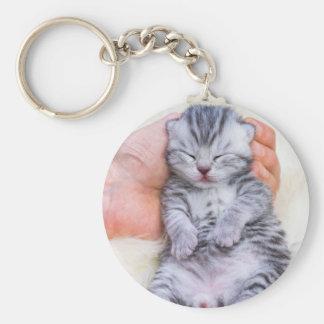 Newborn cat lying sleepy in hand on fur key ring