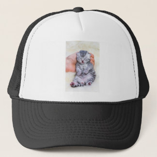 Newborn cat lying sleepy in hand on fur trucker hat