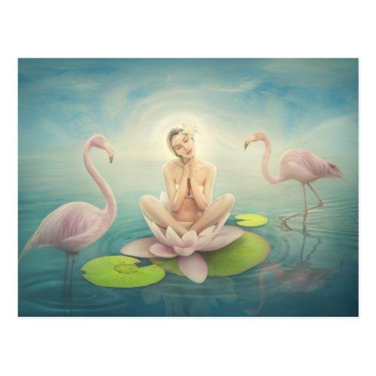 newborn fairy water lilly white light pink postcard