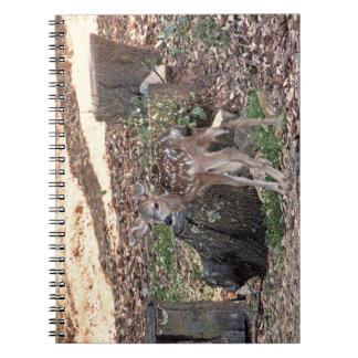 Newborn Fawn Notebook