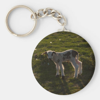 Newborn lamb key ring