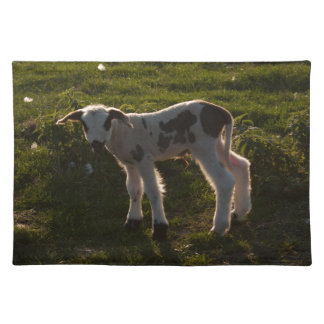 Newborn lamb placemat